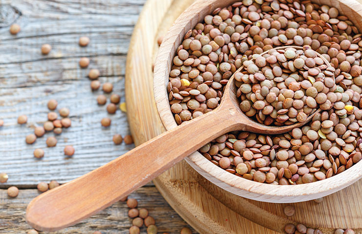 An average 3.5 ounce serving of pink lentils generally has 26 grams of  vegan protein